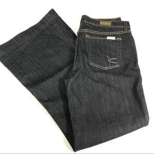 David Kahn Dark Jeans Size 28P S59